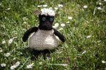 Ovečka, materiál: ovčí vlna, cena: 250,-